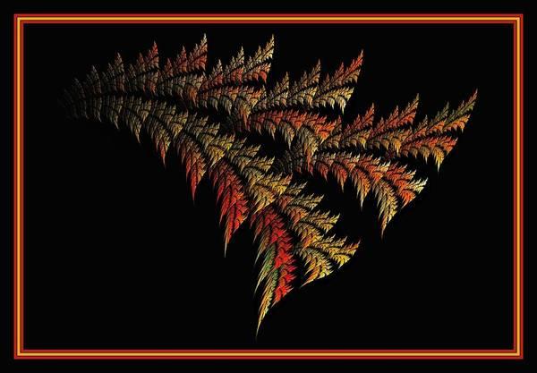 Digital Art - Variegated Palmetto - Framed by Doug Morgan