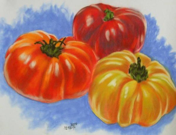Pastel - Variety by Barbara Keith