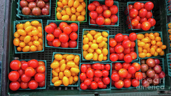 Photograph - Various Type And Colors Of Small Tomatos In Small Plastic Basket by PorqueNo Studios