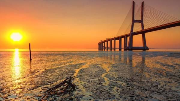Sunset Digital Art - Vasco Da Gama Bridge by Maye Loeser