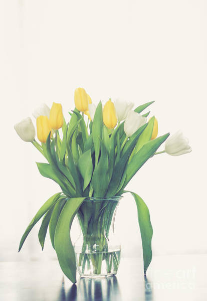 Treen Photograph - Vase Of Tulips by Cheryl Baxter