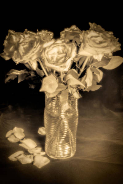 Photograph - Vase With Roses In Sepia by Rudy Umans