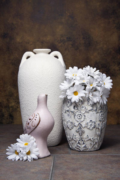 Songbird Photograph - Vases With Daisies II by Tom Mc Nemar