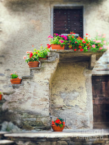 Photograph - Vases With Flowers On Stairs by Silvia Ganora