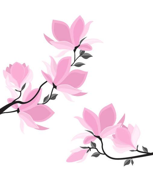 Blooming Tree Drawing - Vector Magnolia Flowers by Miroslava Hlavacova