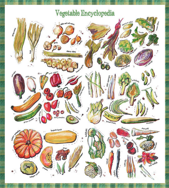 Drawing - Vegetable Encyclopedia  by Ariadna De Raadt