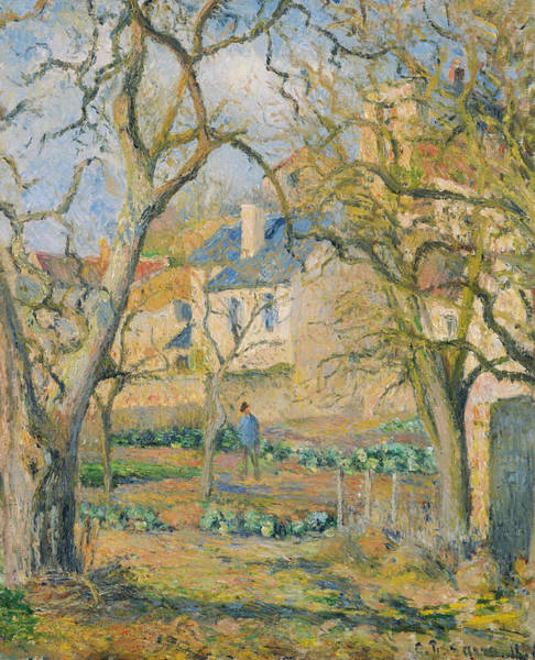 Painting - Vegetable Garden by Camille Pissarro