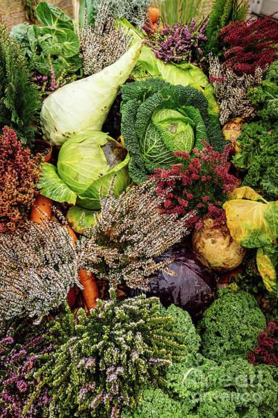 Photograph - Vegetable Pattern by Marina Usmanskaya