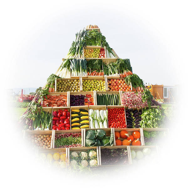Purple Carrot Photograph - Vegetables Pyramid by Paul MAURICE
