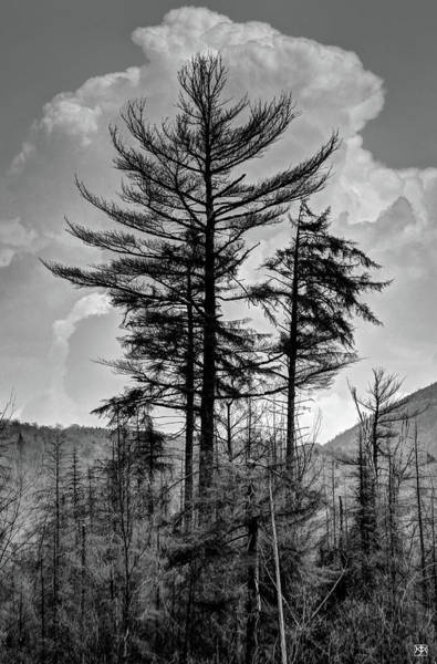 Photograph - Veil Of Cumulus by John Meader