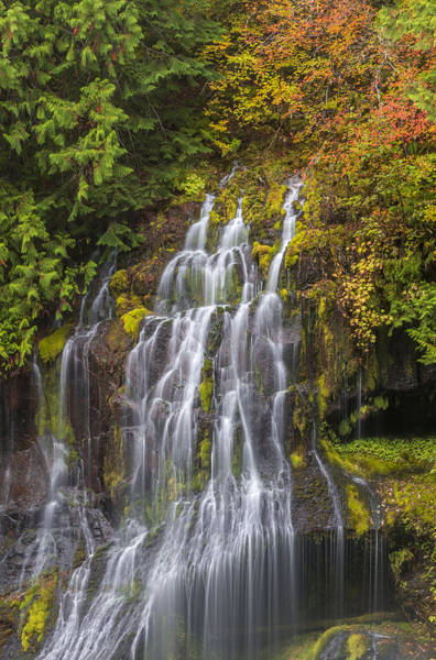 Photograph - Veil Of Water by Loree Johnson