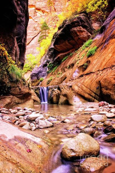 Photograph - Veiled Falls by Scott Kemper