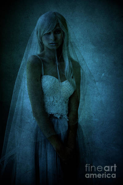 Bride Photograph - Veiled Lady by Diane Diederich