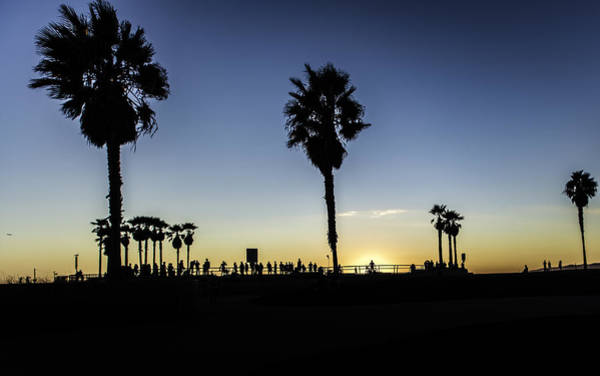 Photograph - Venice Beach Skatepark by Chris Cousins
