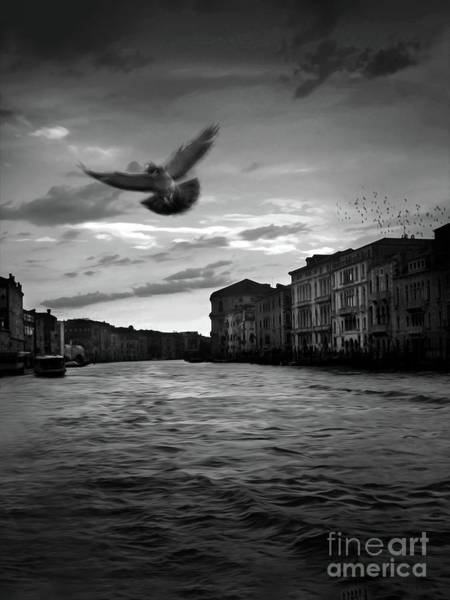 Photograph - Venice Grand Canal by Gregory Dyer