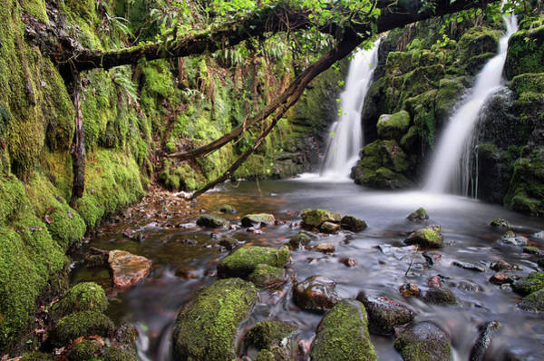 Photograph - Vennford Waterfall On Dartmoor In Spring by Pete Hemington