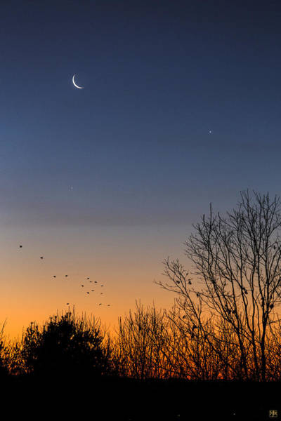Photograph - Venus, Mercury And The Moon by John Meader