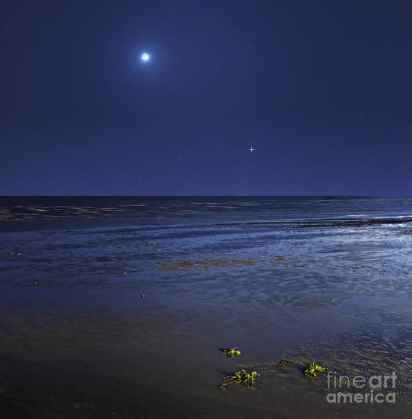 Buenos Aires Photograph - Venus Shines Brightly by Luis Argerich