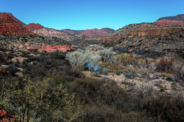 Photograph - Verde Canyon Oasis by Susie Weaver