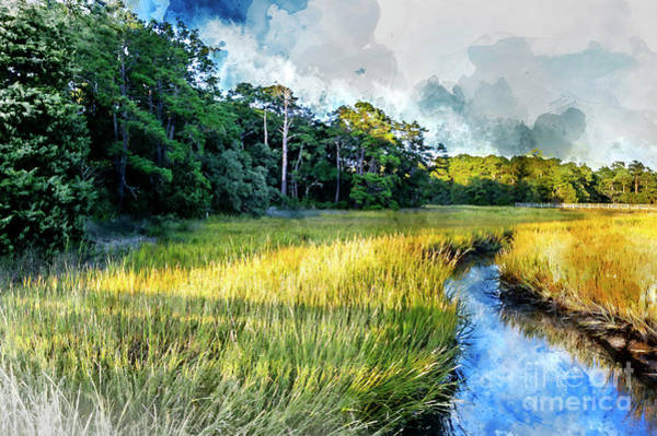 Digital Art - Vereen Memorial Gardens by David Smith