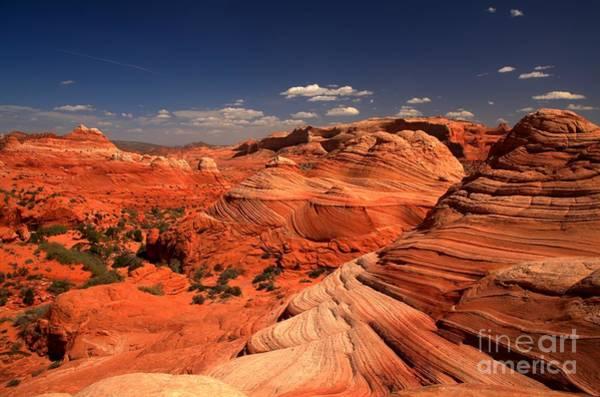 Vermilion Cliffs National Monument Photograph - Vermilion Cliffs Rugged Landscape by Adam Jewell