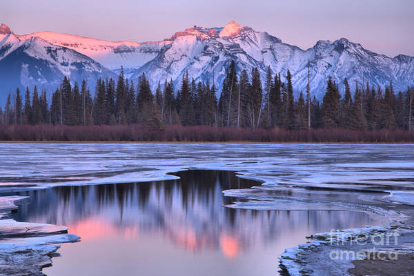 Photograph - Vermilion Lakes Pink Reflections by Adam Jewell