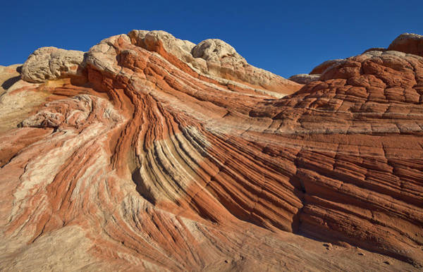Photograph - Vermillion Cliffs Sandstone by Yva Momatiuk John Eastcott