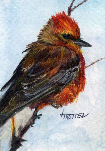 Atc Painting - Vermillion Flycatcher by Jimmie Trotter