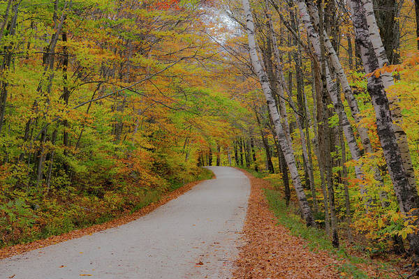Photograph - Vermont Country Road by Gary Lengyel