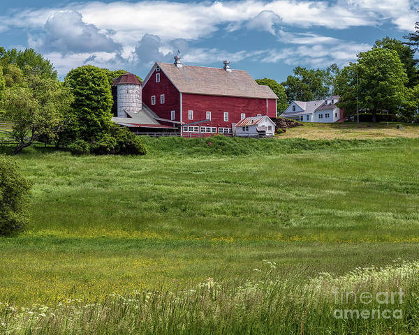 Photograph - Vermont Green by Rod Best