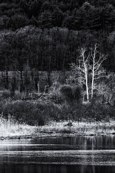 Photograph - Vermont Spring In Black And White by Tom Singleton