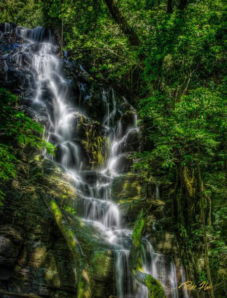 Photograph - Vernal Fall At Rincon De La Veija by Rikk Flohr