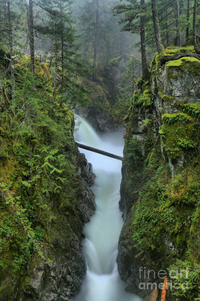 Photograph - Vertical Plunge by Adam Jewell