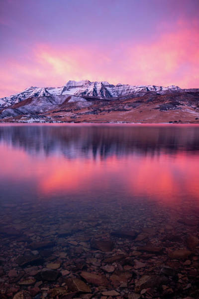 Red Deer Photograph - Vertical Winter Timp Reflection. by Johnny Adolphson