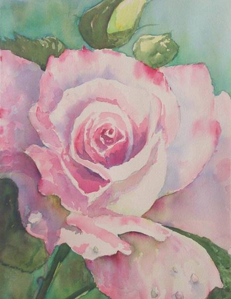 Painting - Very Rose  by Kathy  Karas