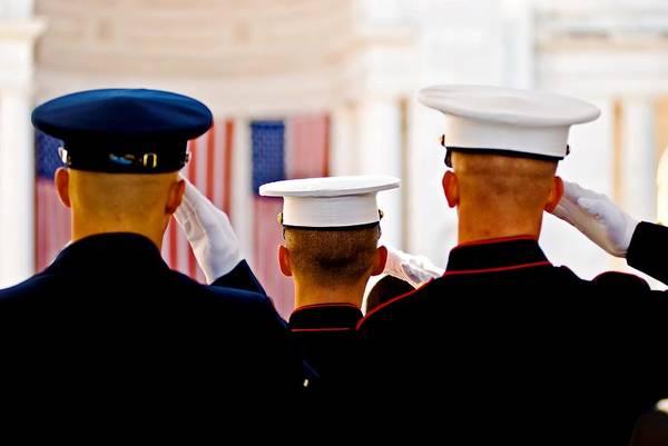 Veterans' Day Salute Art Print