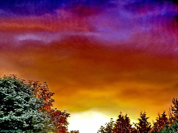 Wall Art - Photograph - Vibrant Evening With Scalar Waves  by Jane Tripp