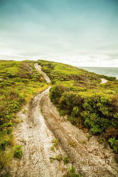 Wall Art - Photograph - Vibrant Green Hills And Ocean Tracks by Jorgo Photography - Wall Art Gallery