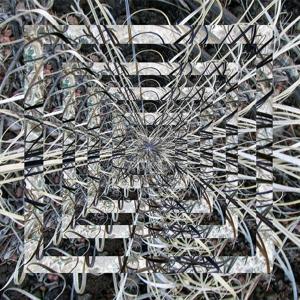 Digital Art - Vibrating Plant Vortex Kaleidoscope by Julia L Wright