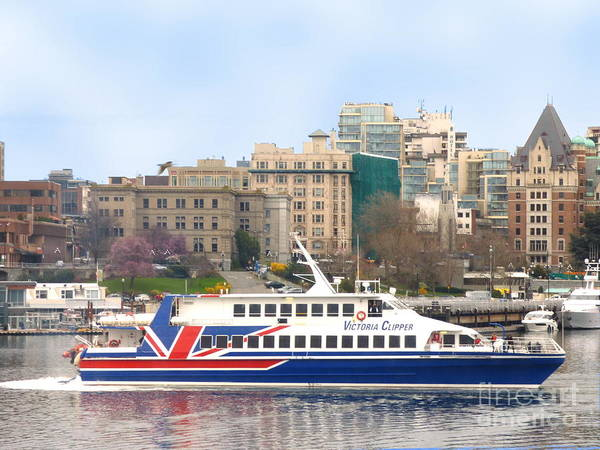 Photograph - Victoria Clipper by Charles Robinson