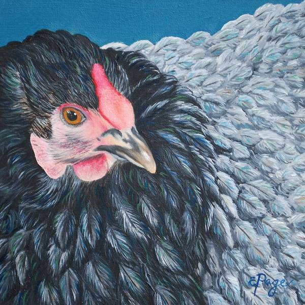 Painting - Victoria, Lavender Cochin Chicken by Emily Page