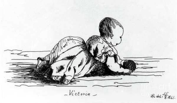 Victoria Drawing - Victoria, The Princess Royal by Queen Victoria