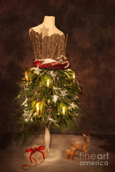 Dress Form Photograph - Victorian Festive Christmas  by Amanda Elwell