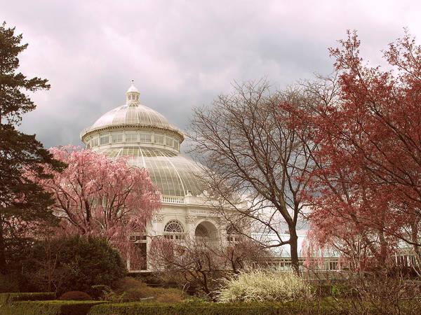 Conservatory Photograph - Victorian Garden by Jessica Jenney