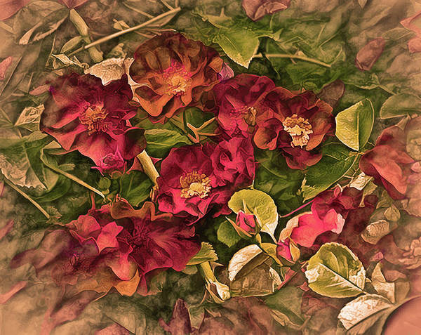 Mixed Media - Victorian Rose Delight 14 by Lynda Lehmann
