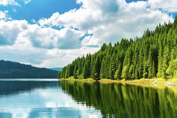 Wall Art - Photograph - Vidra Lake by Mihai Andritoiu