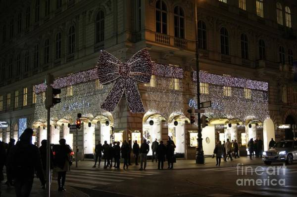 Photograph - Vienna Christmas Bow by David Birchall