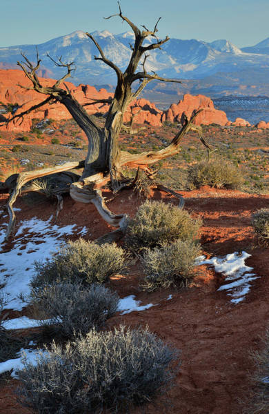 Photograph - View Along Park Road In Arches National Park by Ray Mathis