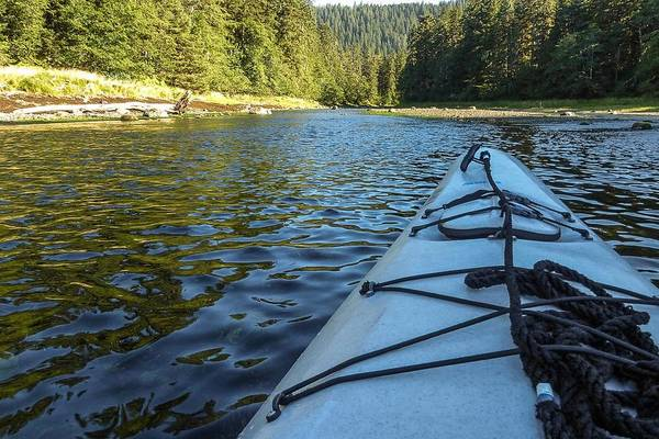 Photograph - View From A Kayak by NaturesPix