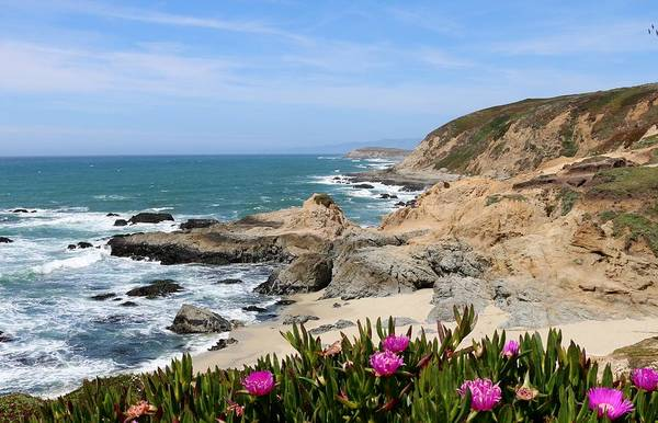 Photograph - View From Bodega Head In Bodega Bay Ca - 2 by Christy Pooschke